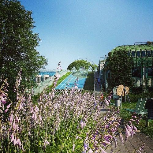 Ogród Botaniczny BUW