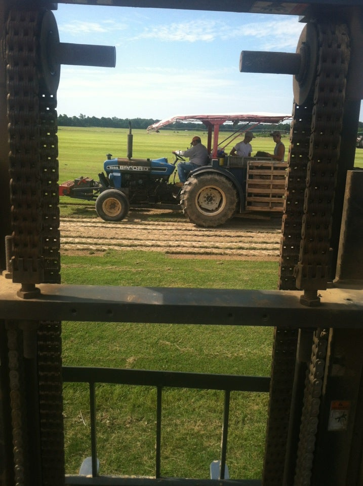 WINSTEAD TURF FARMS INC,