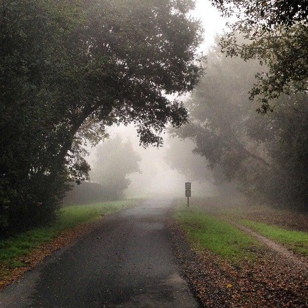 Lafayette-Moraga Regional Trail