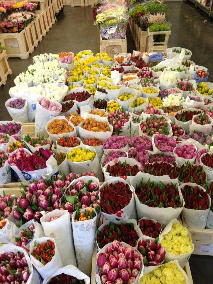 Оптовый склад цветов на пулковском шоссе камелия каталог, букет тюльпанов