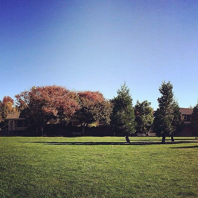 Palo Alto Heritage Park