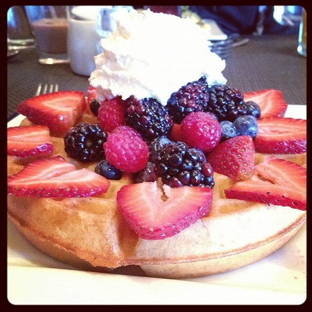 CAFE MUSE,bistro,breakfast,brunch,cafe muse,eggs,grilled cheese,sandwich,trendy,upscale