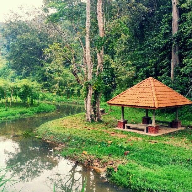 Penang Botanic Gardens 植物園