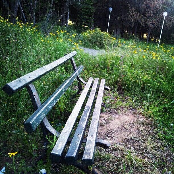 Sidi Bou Said Park