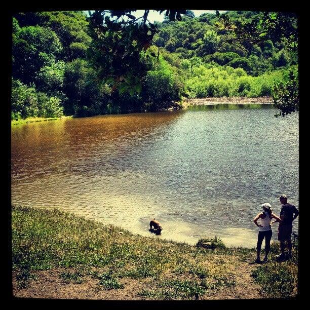 Water Dog Lake Park