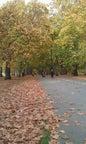 Hyde Park_4