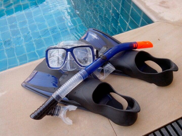 Marina Divers