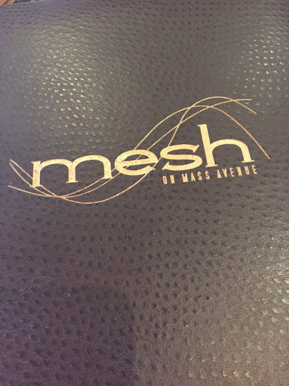 Photo of Mesh on Mass