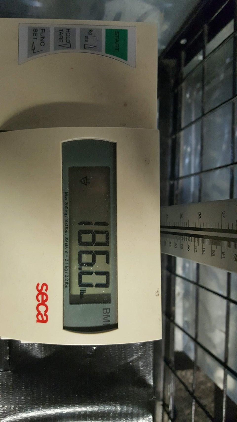 Photo of 24 Hour Fitness, Van Ness