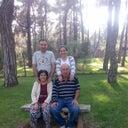 gursu-sasmaz-136605973