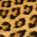 jeans-deejay-11934980