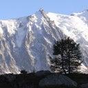 sandra-van-den-berg-13160201