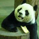 jose-juan-verona-ramos-6886597