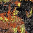 marc-knipschild-3212094