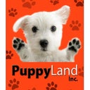 Puppy Land inc. 8.