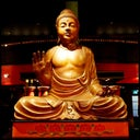 little-buddha-amsterdam-6653781