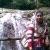 fizzie-amir-40774346