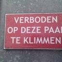dirk-van-gestel-1281982