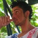 Florin Usc