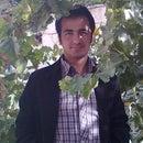 Mehdi Mohammadi