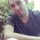 shams tarek