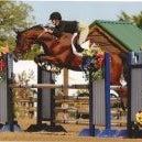Sherwood Sporthorses (Hunter Jumper) Jo Schroeder