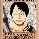 Takehiko Kaneko