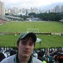 Diego Saraiva