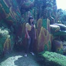 Thalia Jessica
