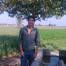 Mukesh Sajwan