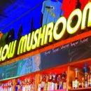 MellowMushroomTuscaloosa
