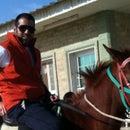 Fahad Alessa