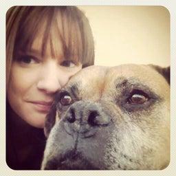 Kacey Dillman Creative Pet Care