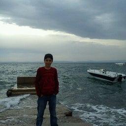 Harun Okut