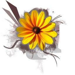 Pelham Flowers