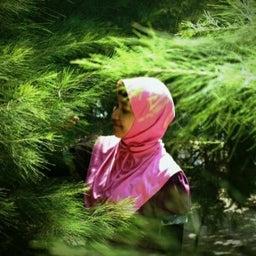Faizah Amin