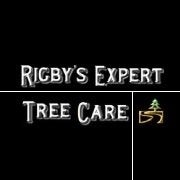 Rigby's Expert Tree Care- The Original Roswell Tree Service LLC