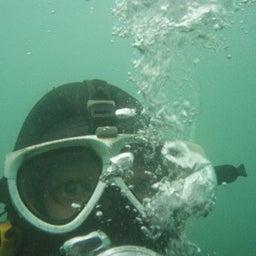 Apa_diver