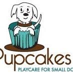Pupcakes Playcare
