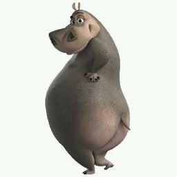 Vhenny hippo