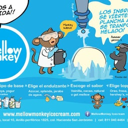 MellowMonkey Icecream