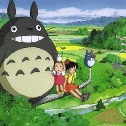 Totoro chan