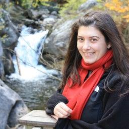 Lauren D'Iorio