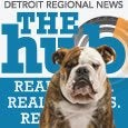 DetroitUnspun Bulldog